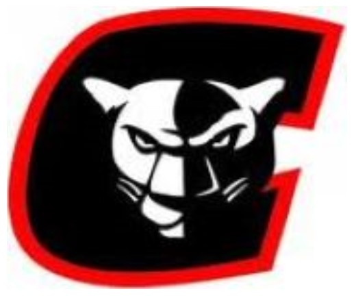 Youth/Junior High/High School Girls Basketball Camp Postponed