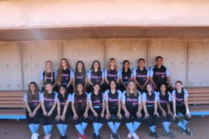 2020 Softball Team Photos