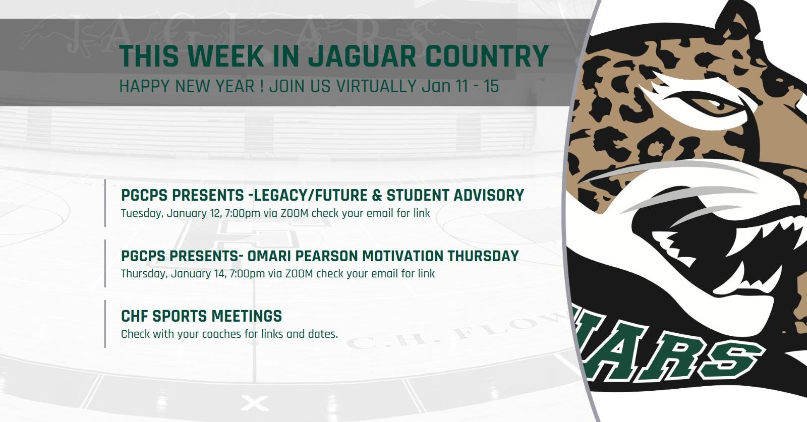 This Week in Jaguar Country