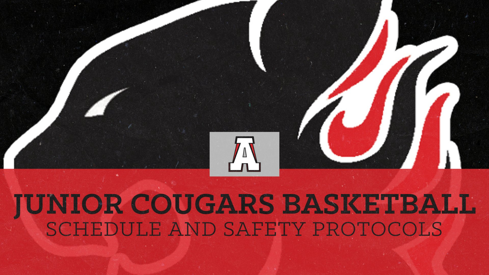 Junior Cougars Basketball Schedule and Game Info