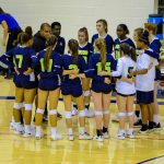 Volleyball announces 2020 rosters