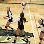 Zeeland East High School Varsity Volleyball falls to Dux 1-3