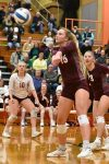CSPA Volleyball Article