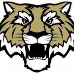 Lady Tigers Youth Basketball Camp, March 20th-23rd.: Now taking Registrations!