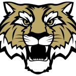 Information for Grades 2nd-8th Lebanon Tigers Boys and Girls Fall Basketball