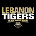 LHS Softball Program Hosting Silent Auction Fundraiser: Information Here
