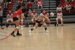 Lake JV Volleyball Falls to Burnet