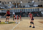 NBMS Volleyball Stung by the Lady Hornets