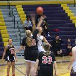Girls Varsity Basketball falls to Bellevue West Senior 66 – 21