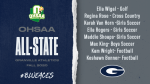 Eight Blue Aces named All Ohio