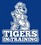 Tigers in Training Summer Baseball Camp
