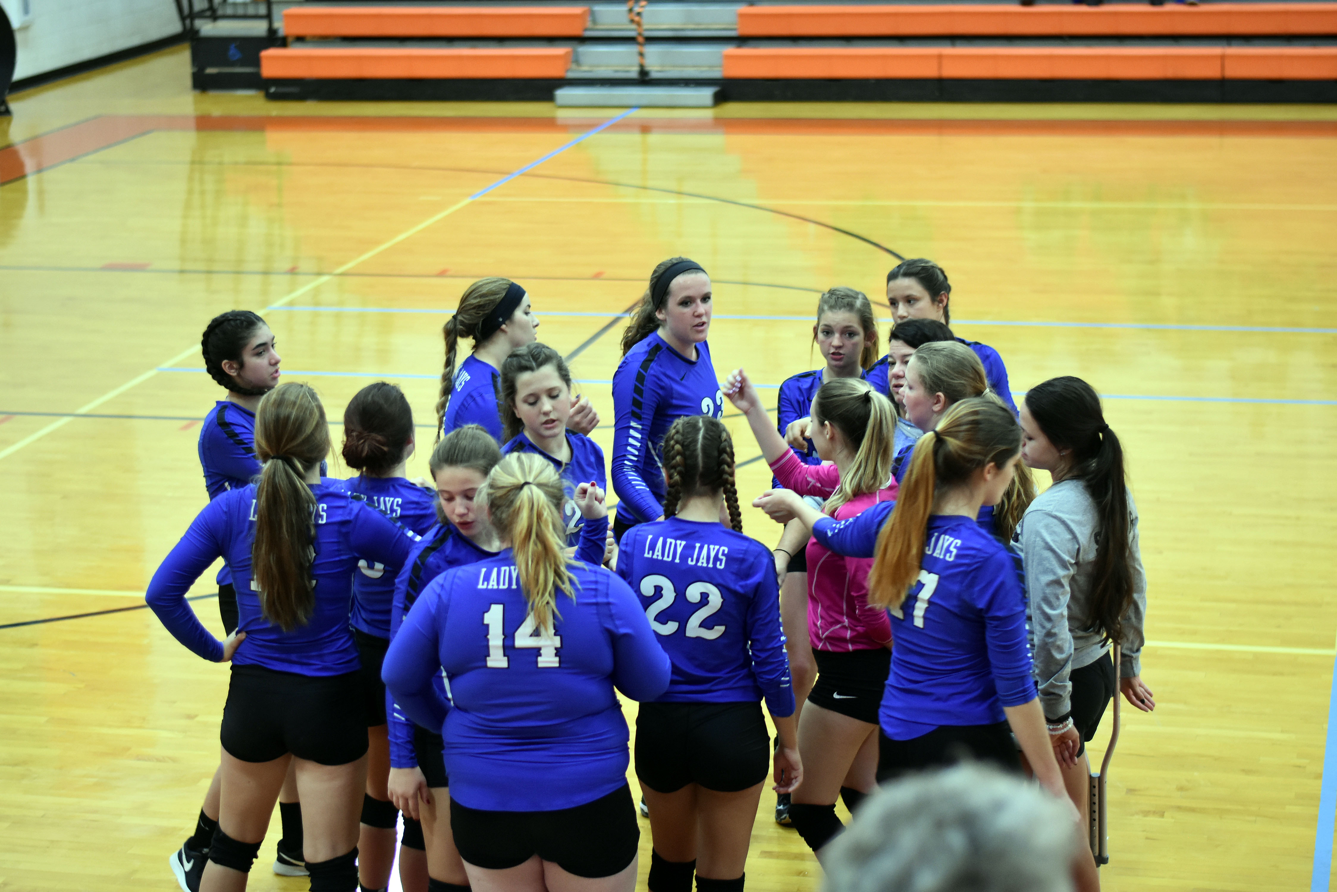 Volleyball-OHSAA Tournament Preview