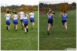Cross Country Team Competes at Districts!