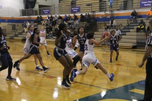Girls Basketball vs. McCluer North – 11/29/18