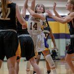Girls Junior Varsity Basketball falls to Northview 56 – 12