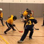 Girls Hockey Energized for Start of Second Season