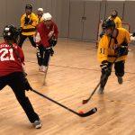 Girls Hockey Impresses, But Still Comes Up Short
