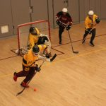 Varsity Hockey Closes Out Home Season In Style