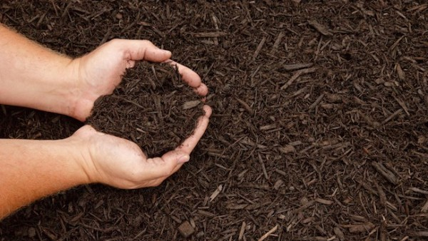 Mulch Sale Planning Meeting – 1/17