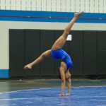 Gymnastics Tryouts Information
