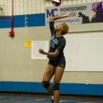 Girls Volleyball All-County Team