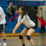 Spring Volleyball Tryout Information
