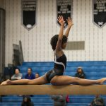 Gymnastics Tryout Information