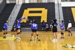 Volleyball v. Alcovy