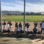 Baseball Update!