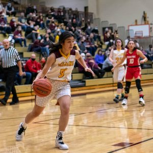 Girls Basketball – Sectionals vs. Crown Point from Mr. Hokanson