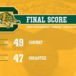 Tigers Win!