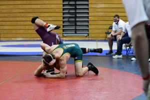Class AAAAA Lower State Individual Wrestling Tournament Photos