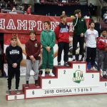 Collica earns All Ohio