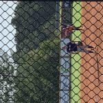 Girls Junior Varsity Softball falls to Lee County 7 – 4