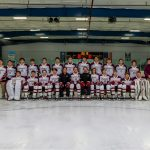 Hockey Advances To State Championship
