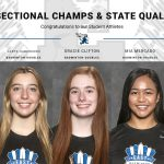 Congrats to our IHSA Badminton Sectional Champions & State Qualifiers!