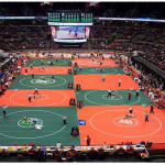 2019 OHSAA Wrestling District Tournament Info