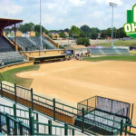 Bulldog Softball OHSAA Tournament Info