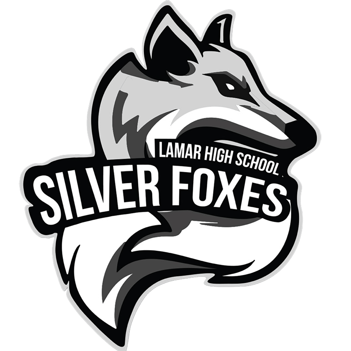 Tickets for Silver Foxes vs. C A Johnson