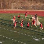 Canton Girls Lacrosse Lose to Saline