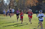 Canton Girls Cross Country Team advances to XC State Meet