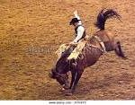 Rodeo THIS WEEKEND!!!