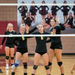WHS Girl's Volleyball 2019 Tryout Info Posted