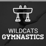Protected: Plymouth Gymnastics Tryouts