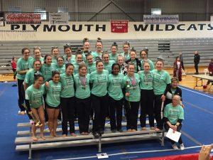 Plymouth Gymnastics – MHSAA Regional and States Photos 2017-2018