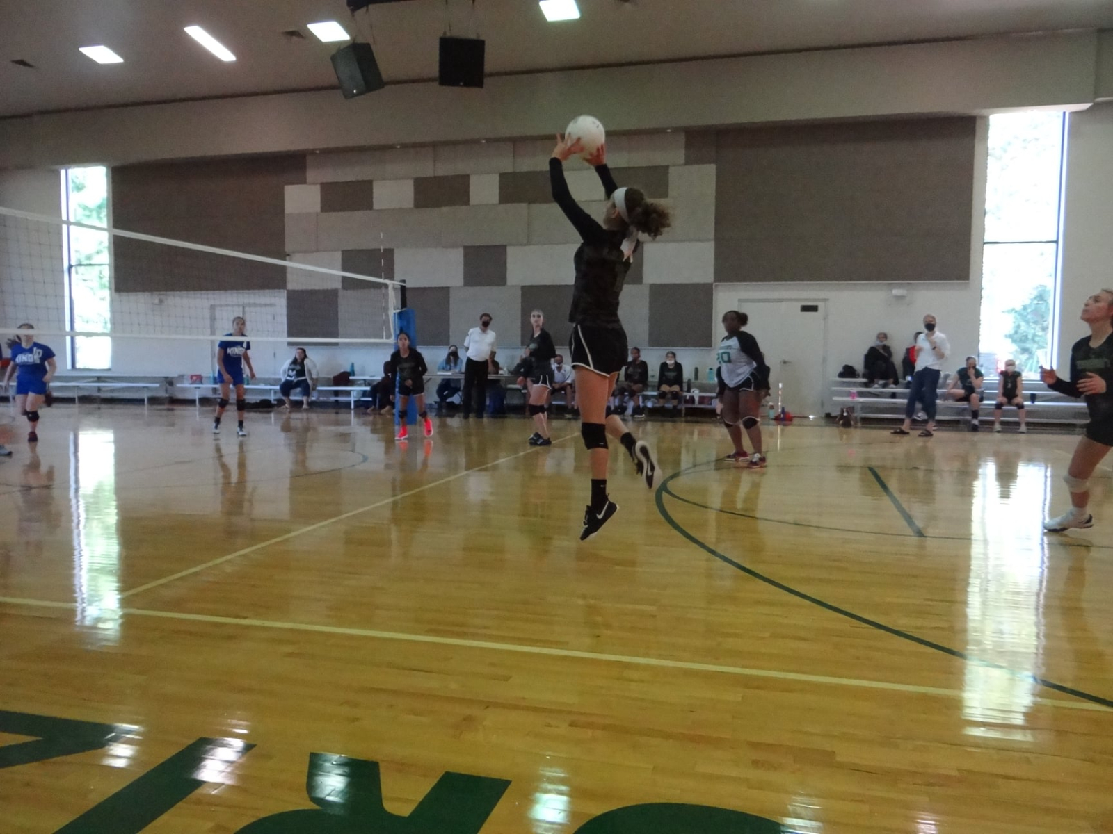Lion Volleyball Clinic 2021