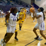 Lady Falcons Basketball Playoff Game Update