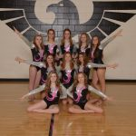 Gymnasts Compete at State