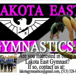 2017-2018 Gymnastics Team Information Now Available