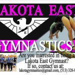 Gymnastics Tryouts Announced